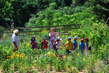 Tous dans les parcs et jardins les 4 et 5 juin annonay for Rdv aux jardins